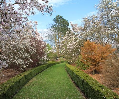 arley-arboretum-gardens-2-500-500